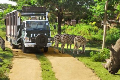 "Bali Safari Park. Package ""Jungle Hopper"""