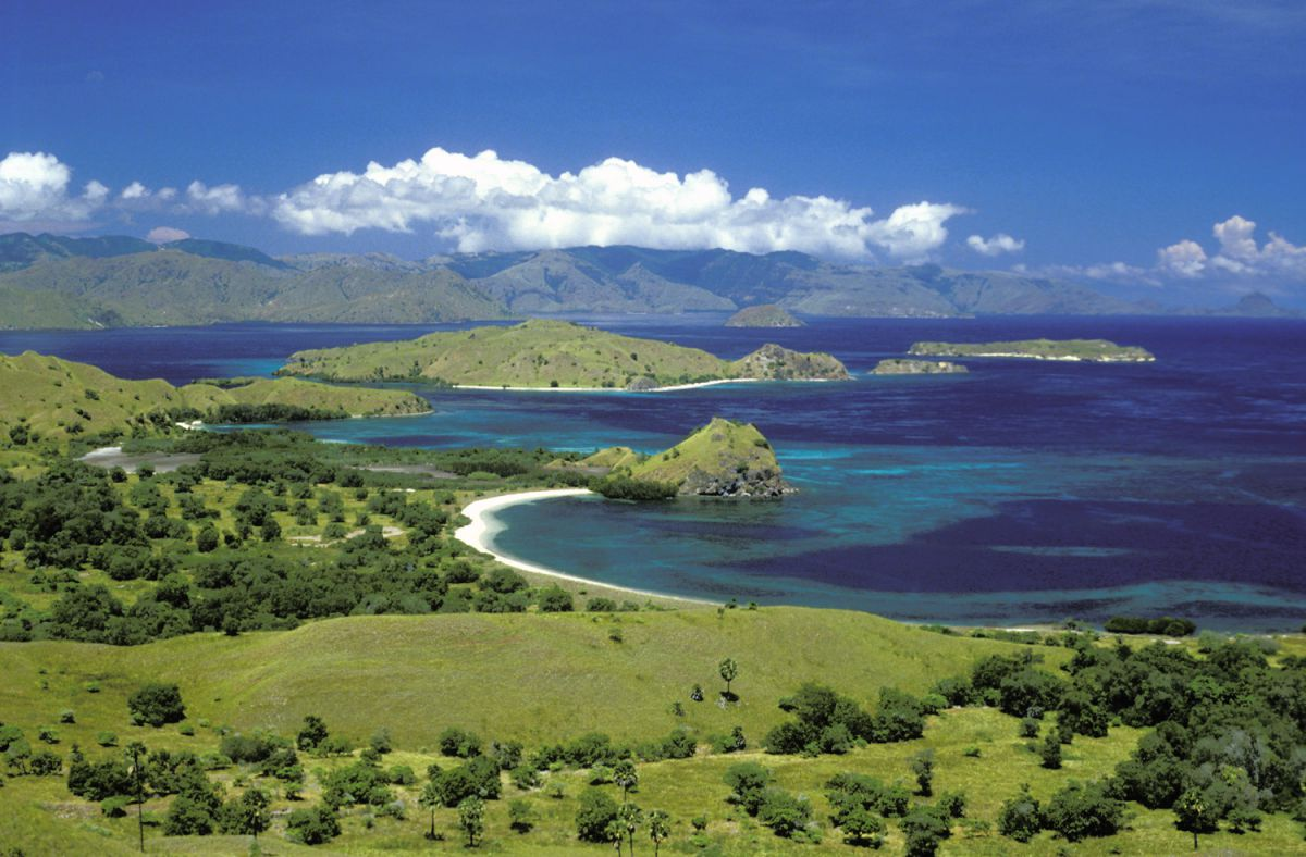 Komodo and Rinca in 1 day - Photo 3