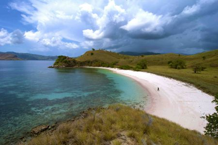 Komodo Adventure 2 days