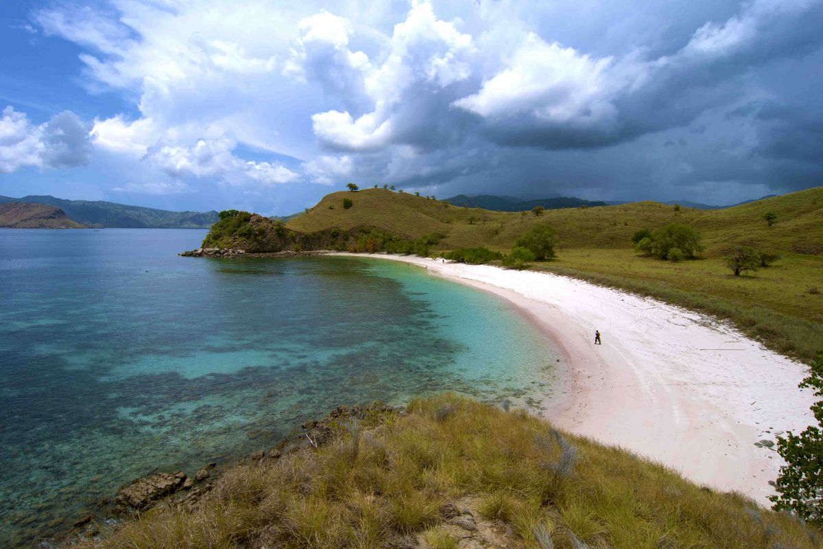 Virgin Nature of Komodo - Photo 7