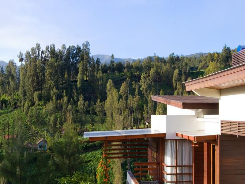 Jiwa Jawa Resort Bromo - Photo 4