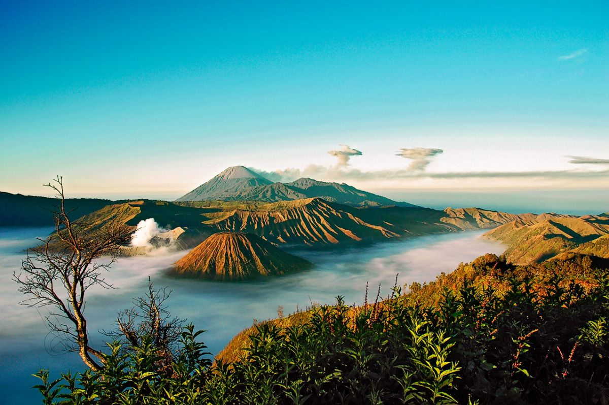 Jiwa Jawa Resort Bromo - Photo 9