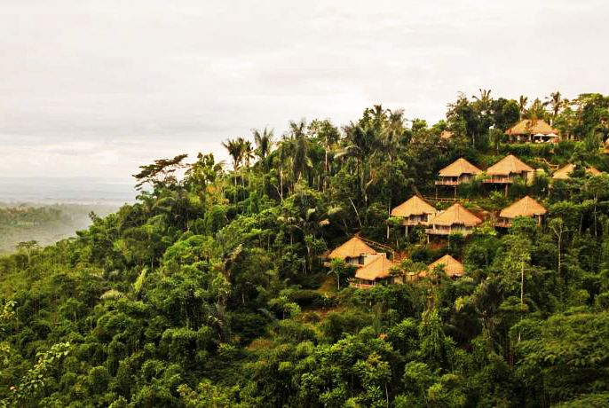 Puri Sebatu Resort Ubud - Photo 3