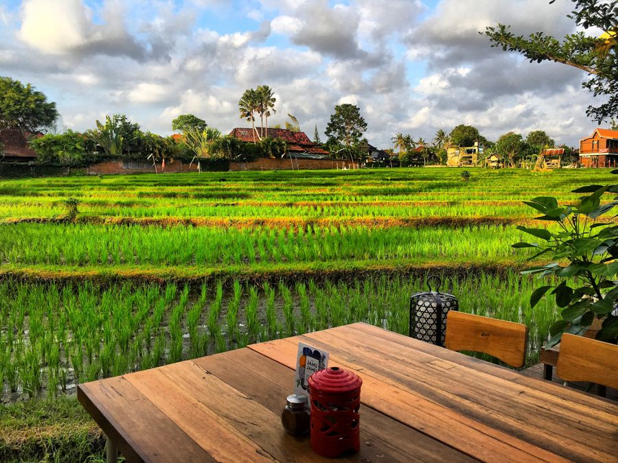 Theanna Eco Villa and Spa Canggu - Photo 9