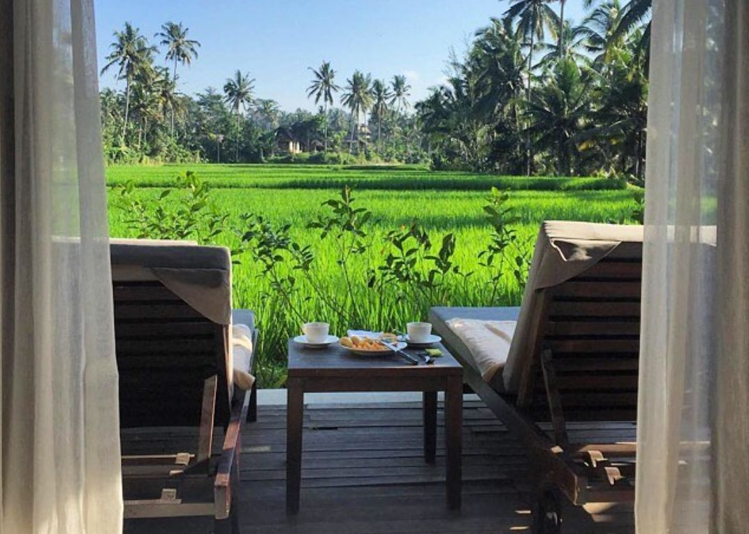 Desa Visesa Ubud 5* - Photo 4