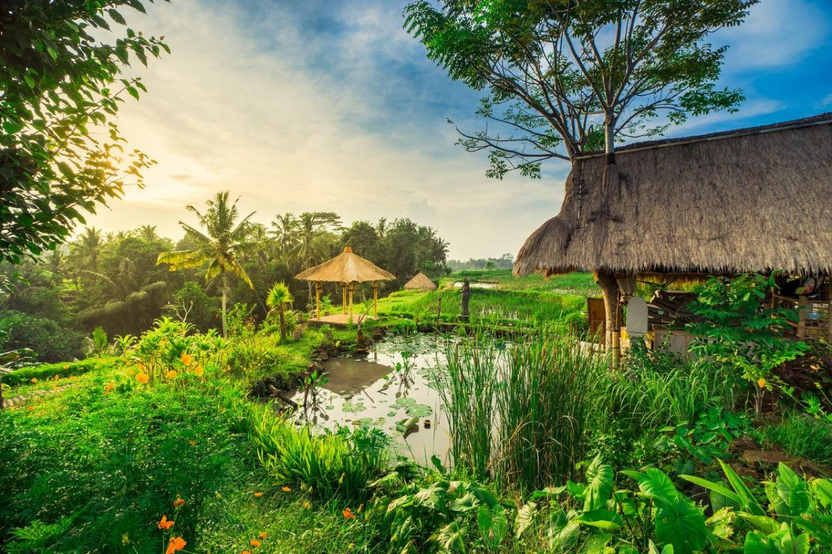 Desa Visesa Ubud 5* - Photo 9
