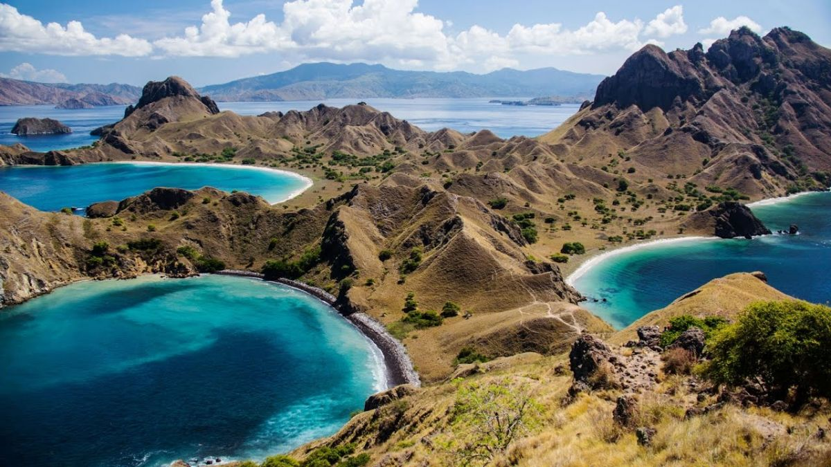 Virgin Nature of Komodo - Photo 8