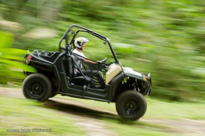 Jungle Buggies