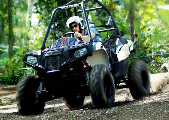 Jungle Buggies - Photo 2