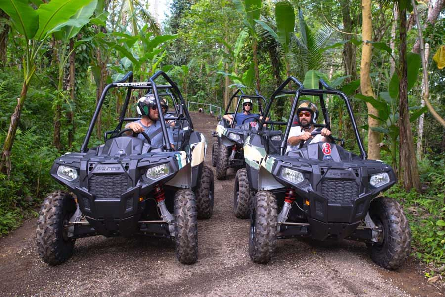 Jungle Buggies - Photo 8