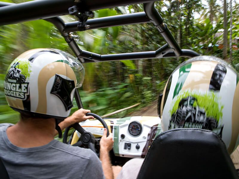 Jungle Buggies - Photo 13