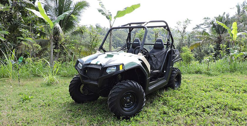 Jungle Buggies - Photo 4
