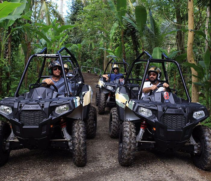 Jungle Buggies - Photo 12