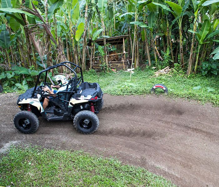Jungle Buggies - Photo 10