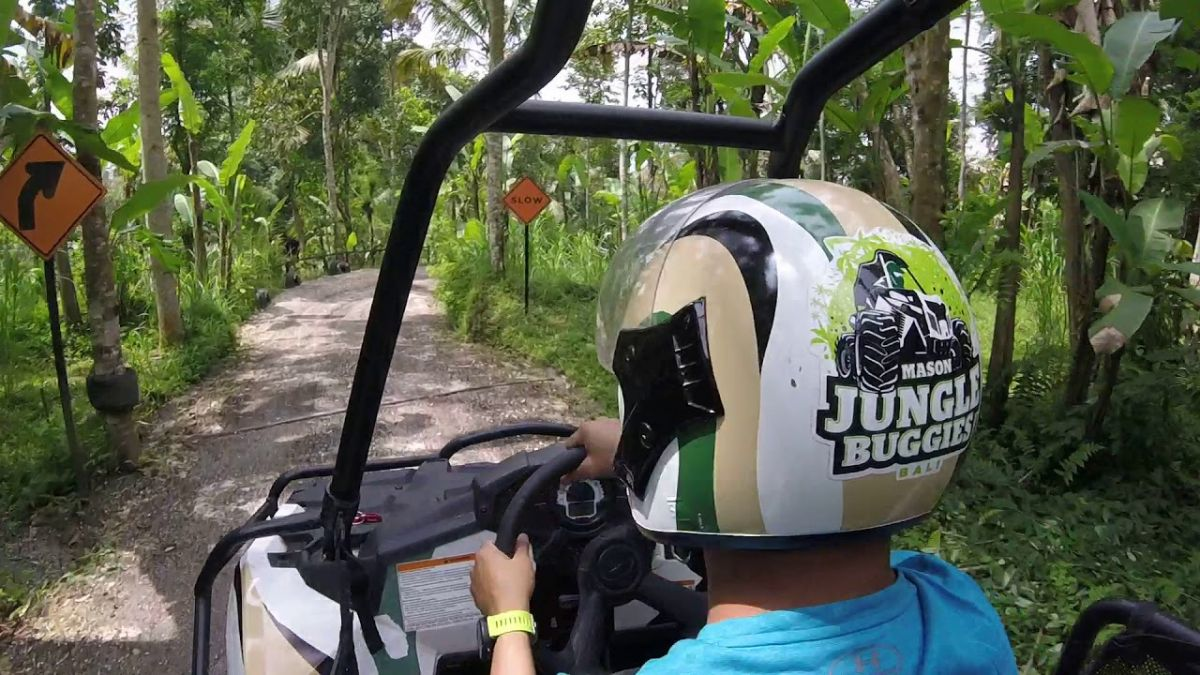 Jungle Buggies - Photo 6