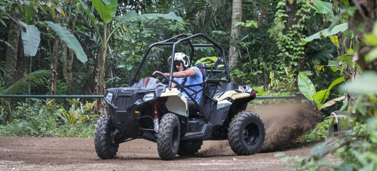 Jungle Buggies - Photo 5