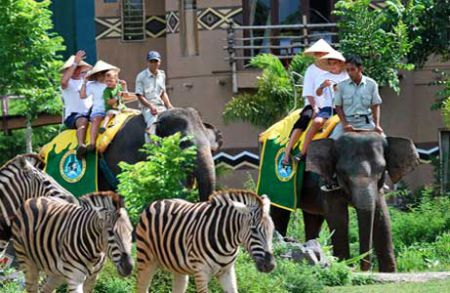 "Bali Safari Park. Package ""Leopard"""