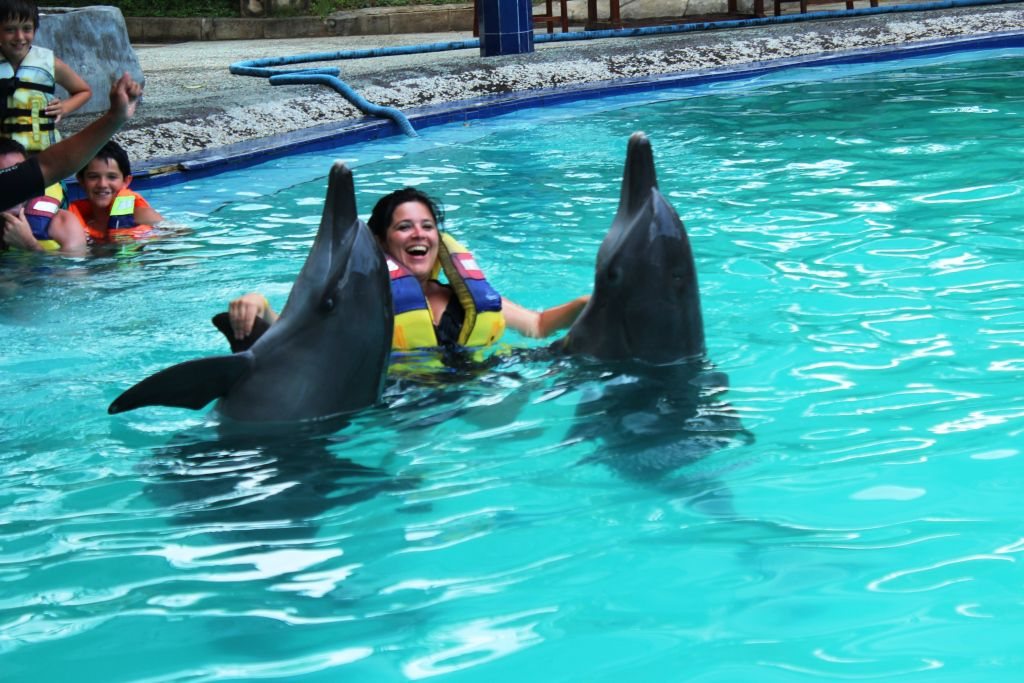 Swimming with dolphins - Photo 3