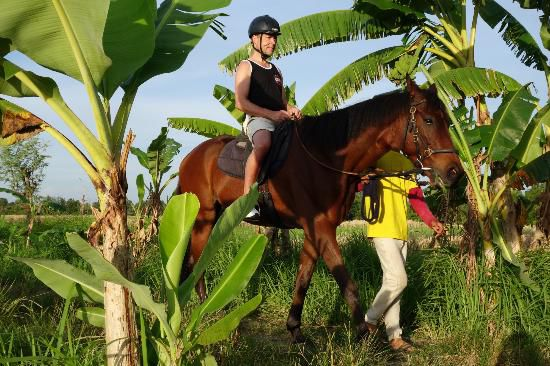 Horseriding 2 hours - Photo 1