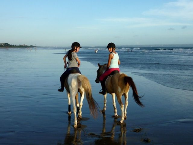 Horseriding 2 hours - Photo 6