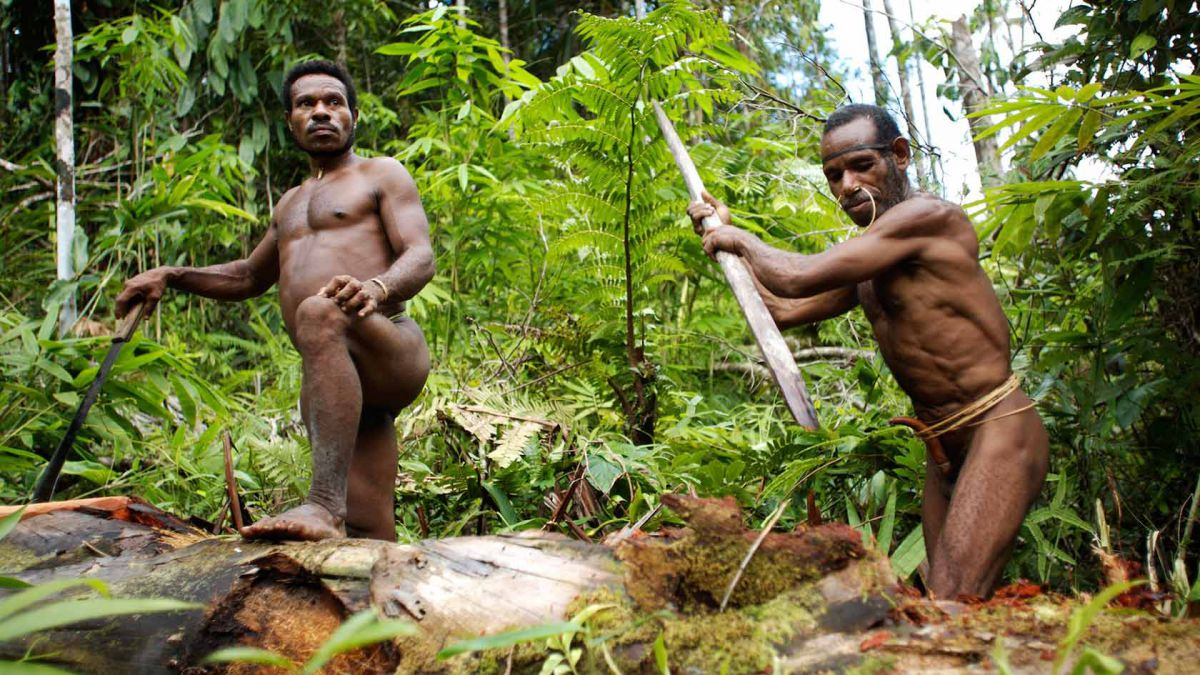 Papua - back to the past - Photo 5