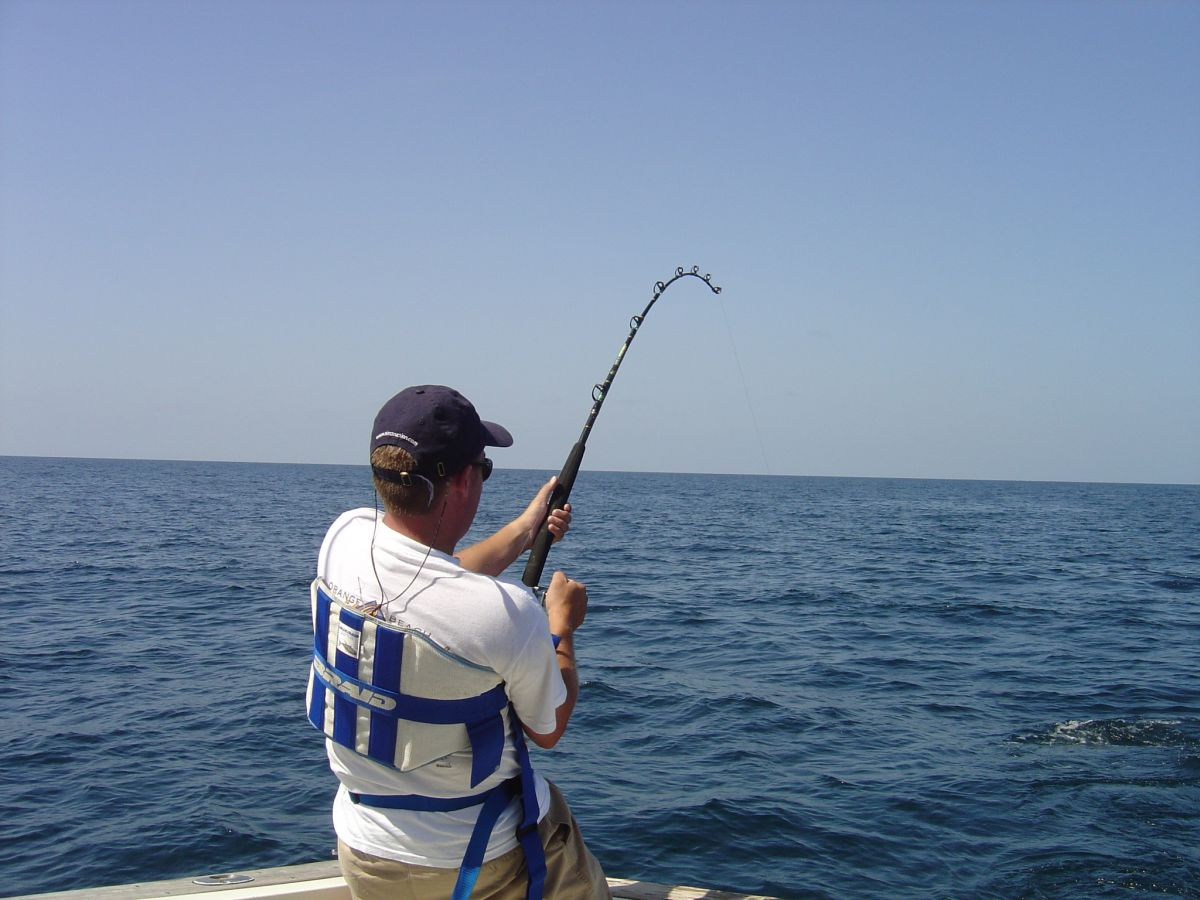 Ocean fishing - Photo 4