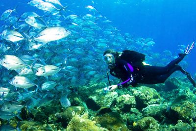 Diving Nusa Dua
