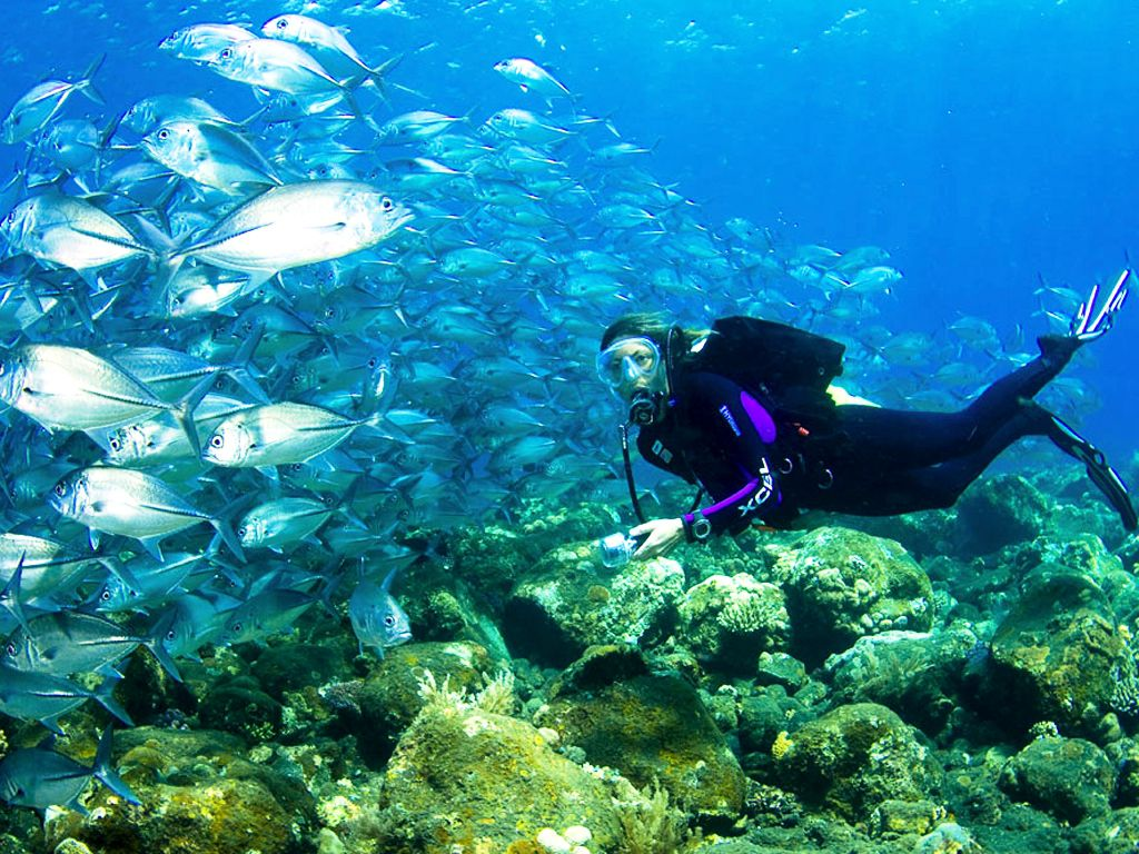 Diving Nusa Dua - Photo 3